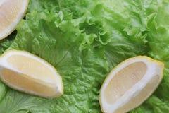 Στενή φωτογραφία του πράσινου υποβάθρου με το μαρούλι Στοκ Εικόνες