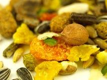 στενή χορτονομή τροφών πολ Στοκ Εικόνες