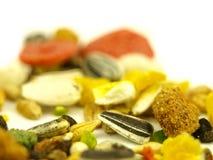 στενή χορτονομή τροφών πολ Στοκ φωτογραφίες με δικαίωμα ελεύθερης χρήσης