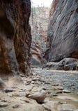 Στενεύει, εθνικό πάρκο Zion, Γιούτα, ΗΠΑ στοκ φωτογραφίες με δικαίωμα ελεύθερης χρήσης