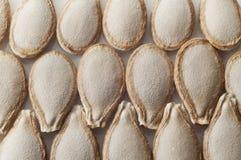 στενοί σπόροι κολοκύθας τροφίμων ανασκόπησης επάνω Στοκ εικόνες με δικαίωμα ελεύθερης χρήσης