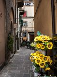 Στενωπός σε Cortona Ιταλία Στοκ Φωτογραφίες