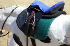 Στενός επάνω αθλητικών αλόγων κάτω από την παλαιά σέλα δέρματος στη εκπαίδευση αλόγου σε περιστροφές compet στοκ φωτογραφία με δικαίωμα ελεύθερης χρήσης