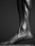 Στενός επάνω ανθρώπινου σώματος Στοκ εικόνα με δικαίωμα ελεύθερης χρήσης