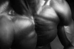 Στενός επάνω ανθρώπινου σώματος Στοκ φωτογραφίες με δικαίωμα ελεύθερης χρήσης
