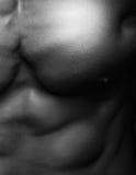 Στενός επάνω ανθρώπινου σώματος Στοκ εικόνες με δικαίωμα ελεύθερης χρήσης