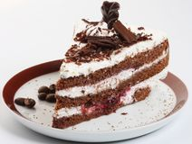 Στενός επάνω βλαστός κέικ σοκολάτας στοκ φωτογραφίες