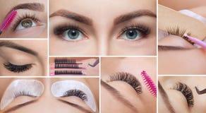 Στενός επάνω διαδικασίας αφαίρεσης Eyelash κολάζ στοκ φωτογραφία με δικαίωμα ελεύθερης χρήσης