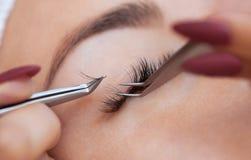 Στενός επάνω διαδικασίας αφαίρεσης Eyelash Όμορφη γυναίκα με τα μακροχρόνια μαστίγια σε ένα σαλόνι ομορφιάς στοκ φωτογραφία με δικαίωμα ελεύθερης χρήσης