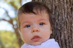 στενός επάνω μωρών Στοκ Εικόνες