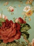 Στενός επάνω λουλουδιών Janyce Στοκ Εικόνα