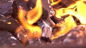 Στενός επάνω πυροβολισμός άνθρακα και πυρκαγιάς απόθεμα βίντεο