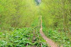 Στενός σιδηρόδρομος μετρητών Στοκ φωτογραφίες με δικαίωμα ελεύθερης χρήσης