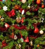 στενό δέντρο Χριστουγέννω&n Στοκ Εικόνες