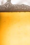 στενό γυαλί μπύρας επάνω Στοκ Φωτογραφία