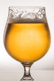 στενό γυαλί μπύρας επάνω Στοκ εικόνα με δικαίωμα ελεύθερης χρήσης