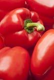 στενό κόκκινο πιπεριών κο&upsi Στοκ εικόνα με δικαίωμα ελεύθερης χρήσης