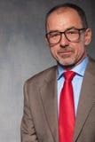 Στενό πορτρέτο ώριμου, φαλακρός, γενειοφόρος, επιχειρηματίας Στοκ εικόνα με δικαίωμα ελεύθερης χρήσης