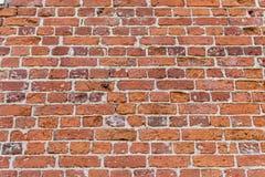 στενό πλάνο τούβλου ανασκόπησης επάνω Στοκ εικόνες με δικαίωμα ελεύθερης χρήσης
