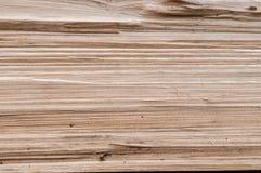 στενό σιτάρι επάνω στο δάσος Στοκ εικόνες με δικαίωμα ελεύθερης χρήσης