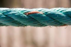 στενό σχοινί επάνω Στοκ εικόνες με δικαίωμα ελεύθερης χρήσης