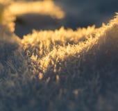 στενό χιόνι κρυστάλλων επάνω Στοκ εικόνες με δικαίωμα ελεύθερης χρήσης