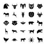 Στερεά εικονίδια ζώων καθορισμένα ελεύθερη απεικόνιση δικαιώματος
