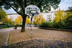 Στεφάνη καλαθοσφαίρισης και χρώμα φθινοπώρου σε Helmholtzplatz, σε Prenzlaue Στοκ Εικόνες
