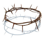 στεφάνι αγκαθιών Χριστού Στοκ Εικόνες