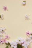 Στεφάνι ανθών λουλουδιών της Apple πέρα από το γκρίζο μπλε υπόβαθρο Στοκ εικόνα με δικαίωμα ελεύθερης χρήσης