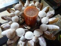 Στεφάνι θαλασσινών κοχυλιών Στοκ Εικόνα