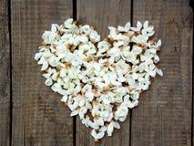Στεφάνι καρδιών των άσπρων πετάλων λουλουδιών ακακιών ανθίζοντας στο σκοτεινό ξύλινο υπόβαθρο Στοκ Εικόνες
