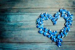 Στεφάνι καρδιών των μπλε πετάλων και των λουλουδιών lupines στο σκοτεινό ξύλινο υπόβαθρο Στοκ φωτογραφίες με δικαίωμα ελεύθερης χρήσης