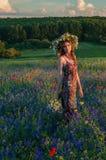 στεφάνι κοριτσιών λουλ&omicr όμορφο κορίτσι Ουκρανός Στοκ Φωτογραφία