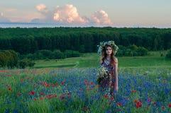στεφάνι κοριτσιών λουλ&omicr όμορφο κορίτσι Ουκρανός Στοκ Εικόνες