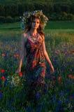 στεφάνι κοριτσιών λουλ&omicr όμορφο κορίτσι Ουκρανός Στοκ εικόνες με δικαίωμα ελεύθερης χρήσης