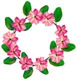 Στεφάνι λουλουδιών γύρω από τον κύκλο Ζωηρόχρωμο πλαίσιο με τα πράσινα φύλλα Διανυσματικό σύνολο σχεδίου απεικόνισης απεικόνιση αποθεμάτων