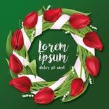 Στεφάνι λουλουδιών κόκκινες τουλίπες, κρίνοι της κοιλάδας, διάνυσμα Στοκ εικόνες με δικαίωμα ελεύθερης χρήσης