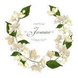 Στεφάνι λουλουδιών της Jasmine Στοκ φωτογραφίες με δικαίωμα ελεύθερης χρήσης