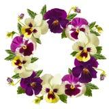 Στεφάνι λουλουδιών. Στοκ Εικόνες