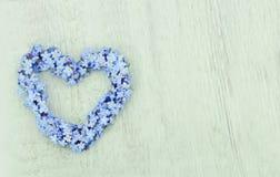 Στεφάνι λουλουδιών forget-me-not Στοκ εικόνα με δικαίωμα ελεύθερης χρήσης