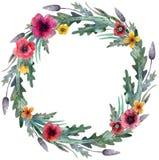Στεφάνι παπαρουνών Κόκκινα λουλούδια και πράσινα φύλλα r διανυσματική απεικόνιση