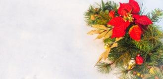Στεφάνι πεύκων poinsettia διακοπών Χριστουγέννων faux με το άσπρο copyspace Στοκ Φωτογραφίες