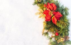 Στεφάνι πεύκων poinsettia διακοπών Χριστουγέννων faux με το άσπρο copyspace Στοκ φωτογραφίες με δικαίωμα ελεύθερης χρήσης