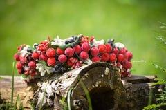 Στεφάνι που διακοσμείται με τα κόκκινα μούρα που βρίσκονται σε ένα δέντρο Στοκ Εικόνες