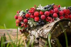 Στεφάνι που διακοσμείται με τα κόκκινα μούρα που βρίσκονται σε ένα δέντρο Στοκ φωτογραφία με δικαίωμα ελεύθερης χρήσης