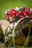 Στεφάνι που διακοσμείται με τα κόκκινα μούρα που βρίσκονται σε ένα δέντρο Στοκ εικόνα με δικαίωμα ελεύθερης χρήσης