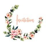 Στεφάνι, πλαίσιο κύκλων με τα ρόδινους λουλούδια watercolor και τους κλάδους ευκαλύπτων απεικόνιση αποθεμάτων