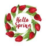 Στεφάνι τουλιπών, λουλούδια, γειά σου άνοιξη, Στοκ Εικόνες