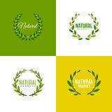 Στεφάνι των κλάδων με τα φύλλα Σχέδιο φυσικών προϊόντων Στοκ Εικόνες